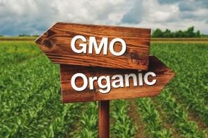 gmo organic farming f