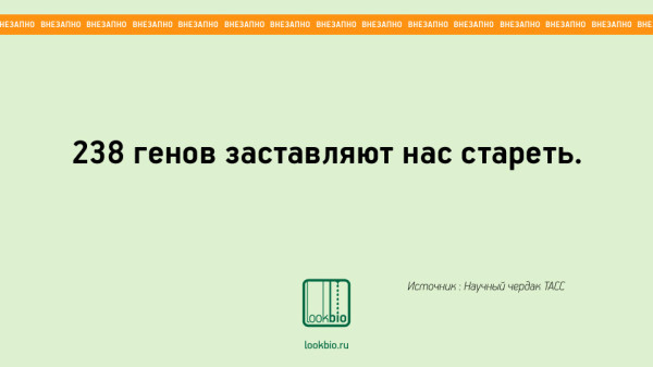 Vnezapno_05