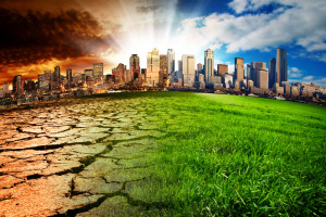 citi climate ecology