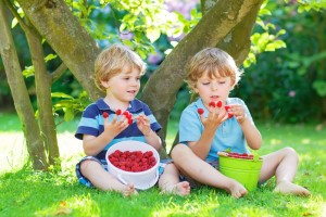 boys eco summer eat