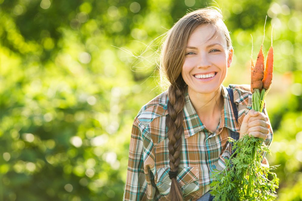 Gardening Woman with organic carrots in a vegetable garden
