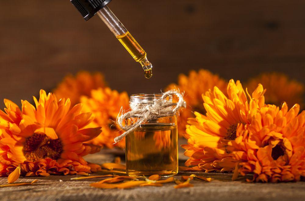Essential oil marigold calendula