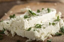 Fresh cheese slices