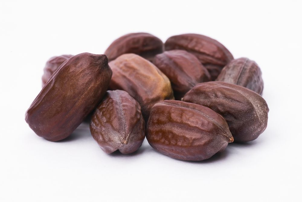 Jojoba seeds Simmondsia chinensis