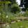 Идеальный огород 18 века воссоздают под Тулой