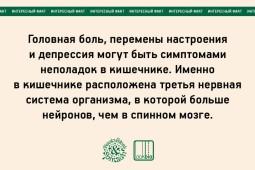 julia bogdanova_02