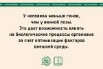 julia bogdanova_04