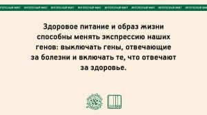 julia bogdanova_06