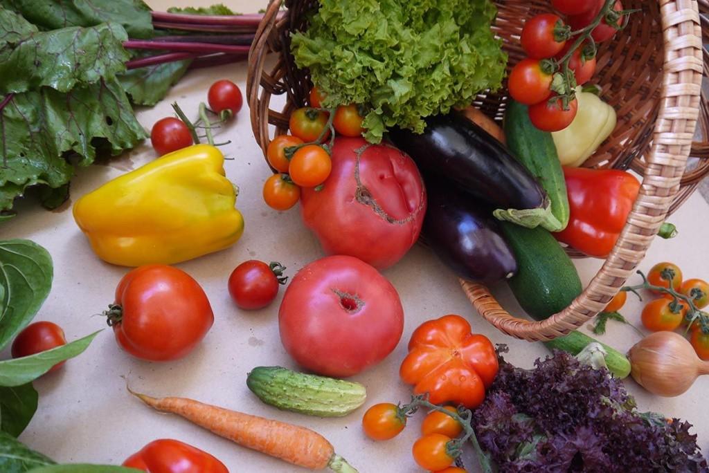 organic bio veggies