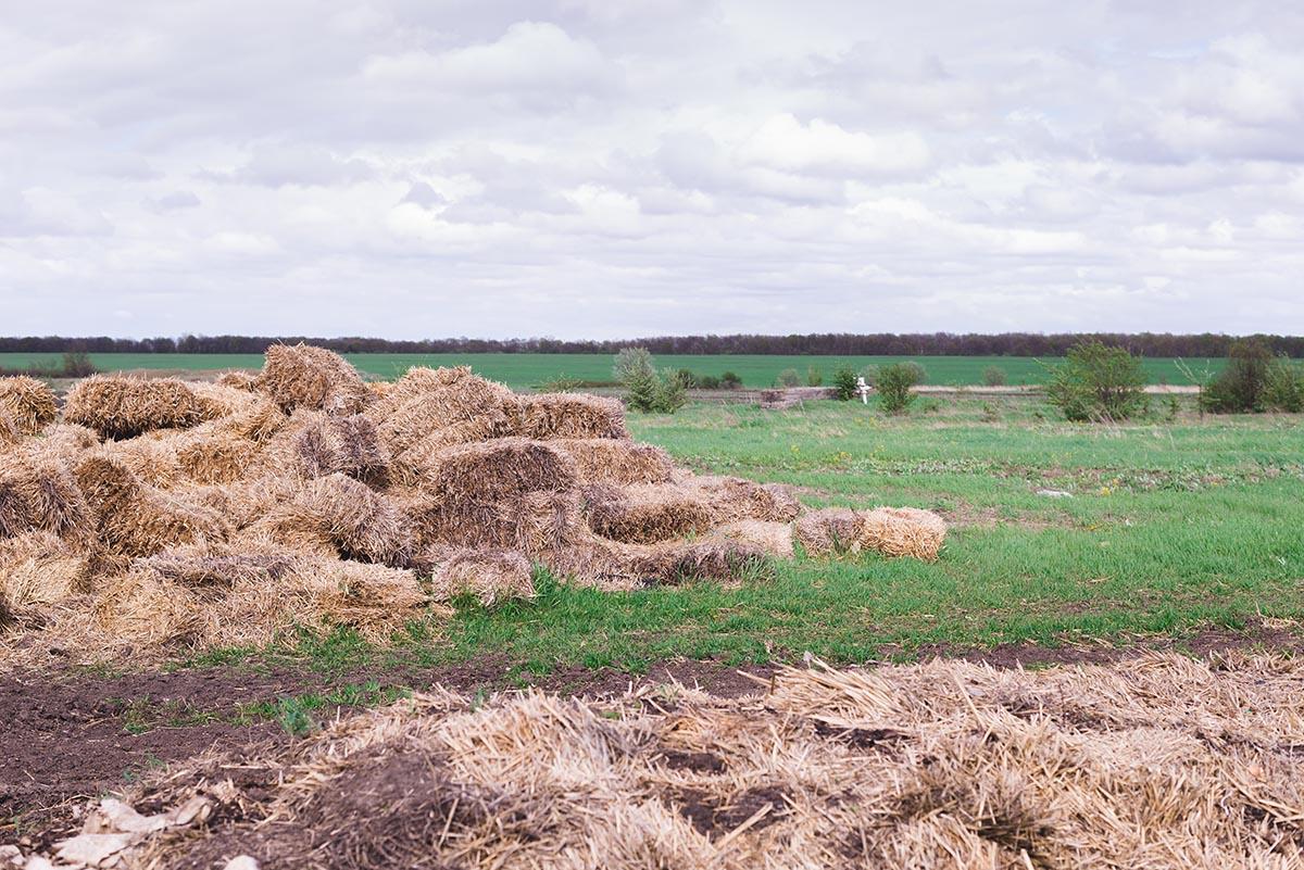 Компостирование почвы - основной прием в органик-земледелии