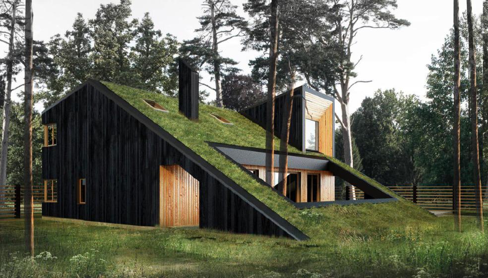 Победитель в Номинации «Жилье» в 2017 году. Никита Капитуров, главный архитектор (Snegiri Architects, Санкт-Петербург) с проектом «ГоркаДом».
