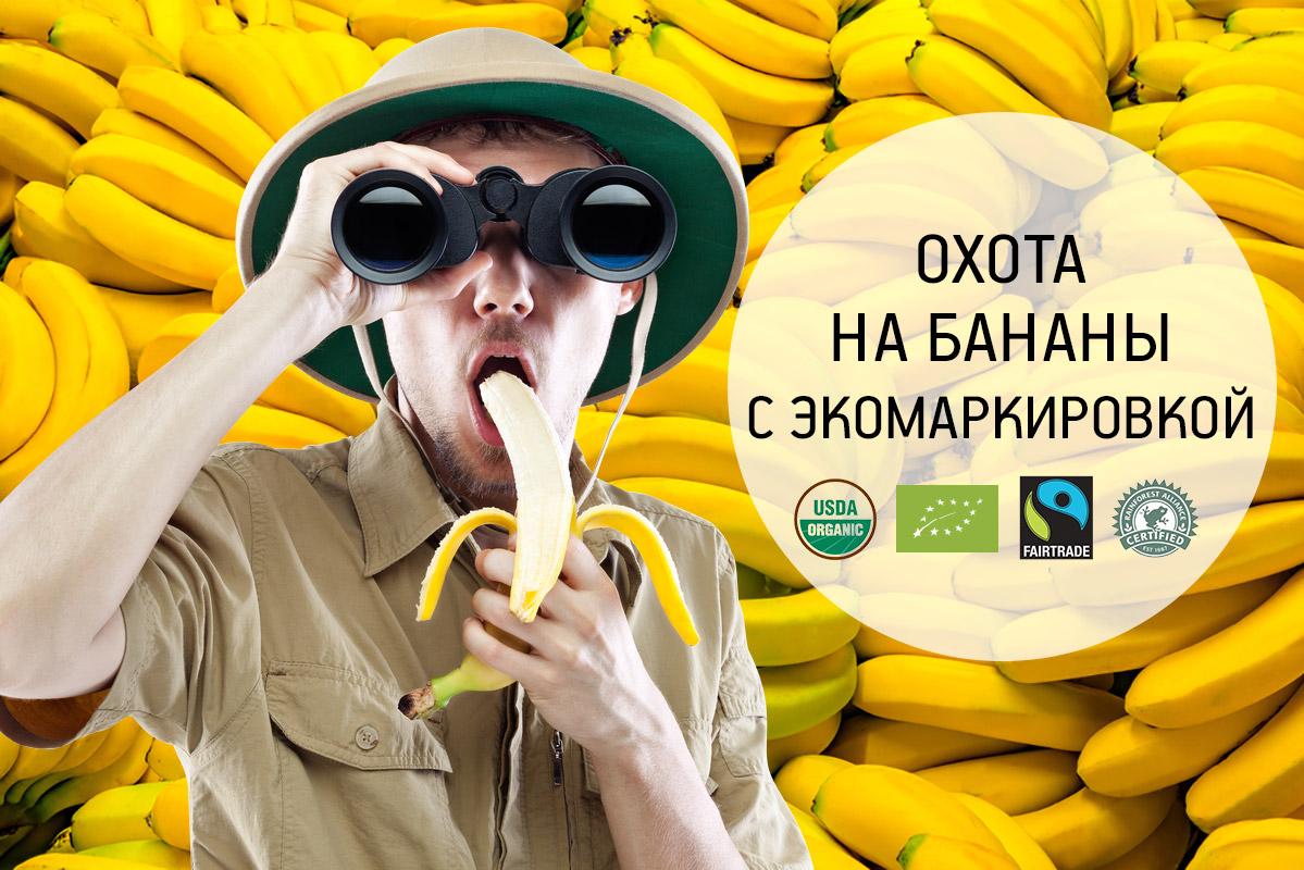 banana-oxota