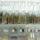 Личный опыт: как открыть zero waste магазин в России