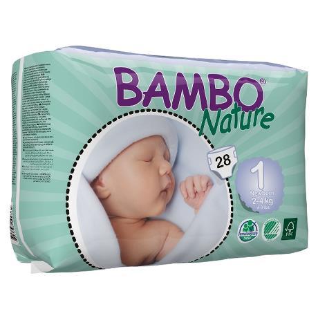 bamboo_nature