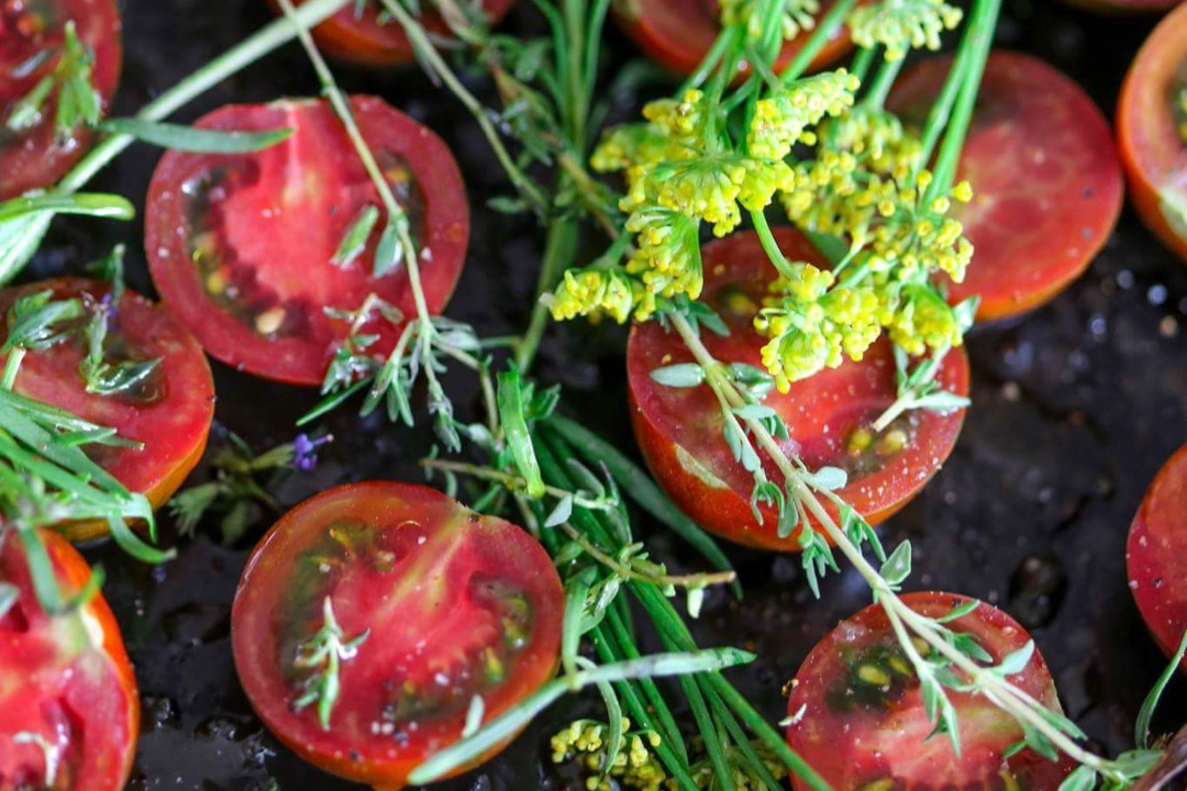 tomatoes shenkerman