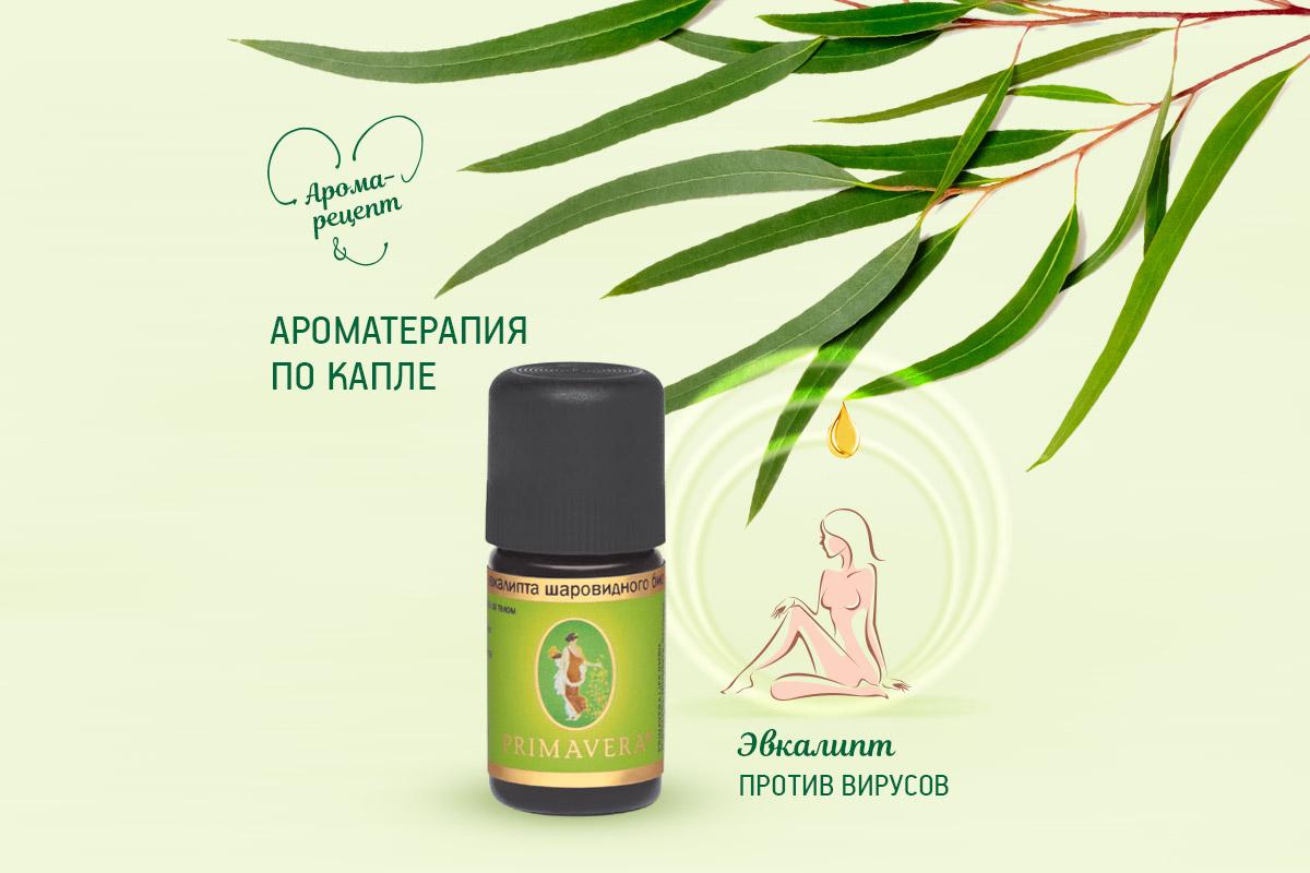 Primavera aromaterapia evkalipt