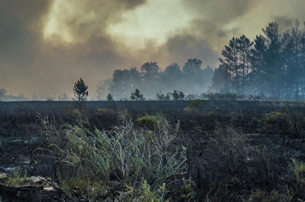 tuman dym parnikoviy effekt greenhouse effect nepogoda