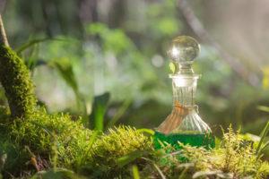zelye butilka grafin steklo svet solnce moh les